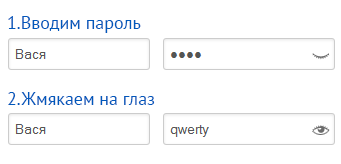 Показываем пароль в поле ввода